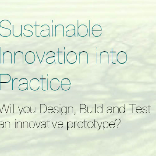 Sustainable Innovation Into Practice